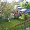 Our side garden